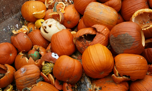 Scary waste: Halloween pumpkins could make soup for everyone in ...