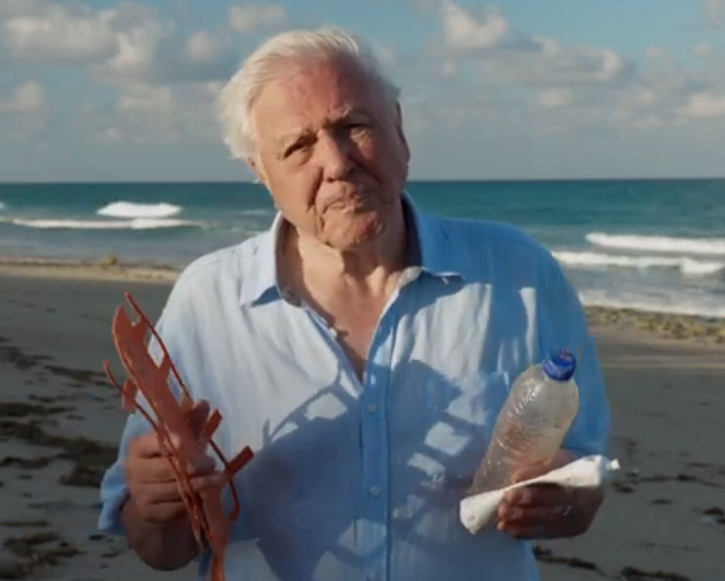 Sir David Attenborough blasts Bear Grylls for killing animals on TV show