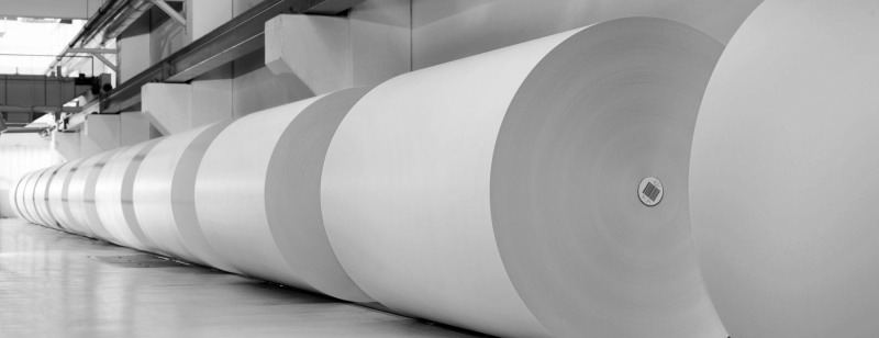 Rolls of paper in a paper mill