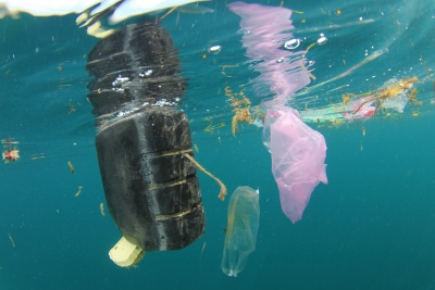 Bottle deposit return schemes needed to tackle marine plastic pollution, says Green Alliance