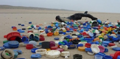 California fights to tether caps to plastic bottles