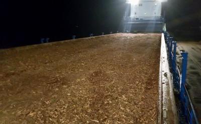 Waste wood arriving in Germany