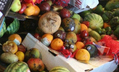 Tesco ranked top supermarket for food waste prevention