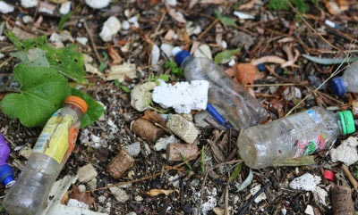 Potential design of bottle deposits system to be studied by Scottish Government