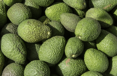 Apeel Sciences has launched its avocados in Germany and Denmark
