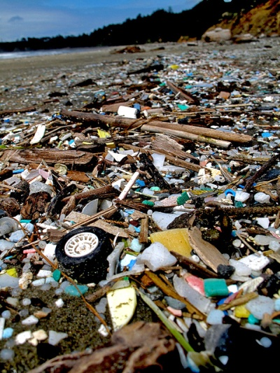 £61-million Commonwealth fund to tackle plastic pollution