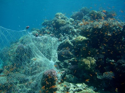Drowning in Plastic: BBC documentary explores dangers of marine plastic