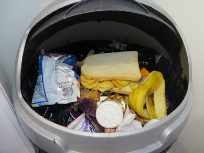 food waste in bin