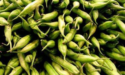 Tesco announces food waste mitigation moves