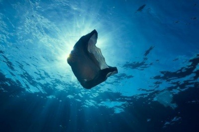 Plastic bag underwater