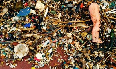 EAC could seek ban after microplastic research
