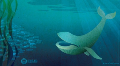 UN Oceans Conference makes 'call to action' on ocean pollution