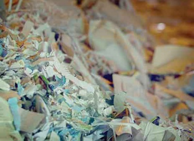 Recycling Association wants focus on whole paper supply chain
