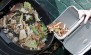 Northern Ireland recycles and composts more than it landfills
