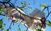 EU plastic bag rules agreed