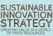 Sustainable Innovation Strategy