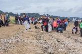 Volunteers picking up beach litter