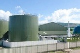 REA launches bioenergy review