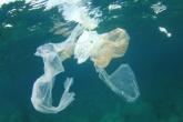 UK to consider tax on single-use plastics to tackle marine plastic pollution