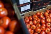 £1.9bn of food wasted by grocery supply chain each year