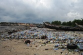 International Coastal Cleanup highlights plastic issue