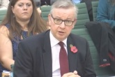 Gove admits to not giving imminent China ban 'sufficient thought'