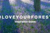 The front page of Hubbub's new Inspiration Guide