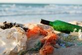 National beach clean-up seeks volunteers