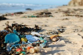 Great British Beach Clean 2016: We will fight marine pollution on the beaches