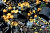 Plastic contamination in compost.