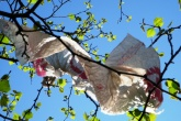 EU plastic bag rules agreed