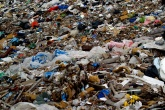 'Wasted health, the tragic case of open dumps'