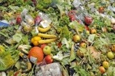 Government will not force retailers to publish food waste data