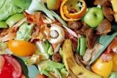 Industry food waste action plan in development