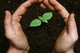 Innovative bio-based materials up for award