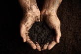 Soil: the forgotten resource