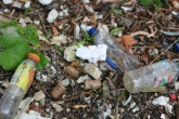 Hub of litter prevention initiatives and lessons launched by Zero Waste Scotland