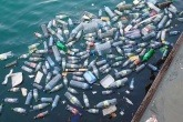 Plastic bottles floating in the sea.