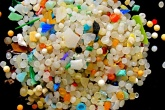 Government to investigate health impact of marine plastic pollution