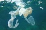 UK to consider tax on single-use plastics to tackle marine plastic pollution