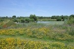 The Tame Valley Wetlands in Warwickshire