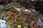 BBIA calls for broader biowaste definition in CEP