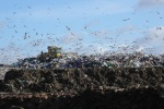 Incoming Welsh Landfill Disposals Tax will provide 'stability' to businesses