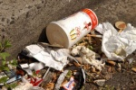 'No perfect way to measure litter' as Defra creates stats dashboard