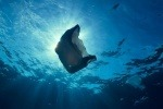 Plastic bag floating underwater