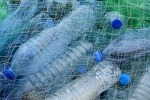 Scottish Government appoints expert panel to tackle plastic pollution