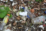 Assembly calls for London deposits study to end plastic bottle blight of Thames