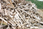 Waste wood classification change could be 'catastrophic' for UK recycling warn industry groupsWaste wood classification change could be 'catastrophic' for UK recycling warn industry groups