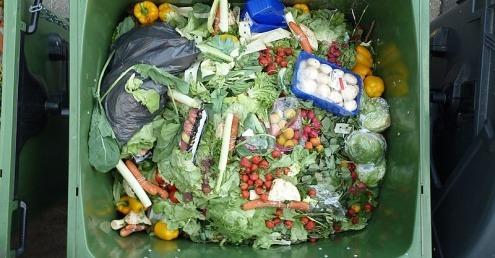 food waste in recycling bin