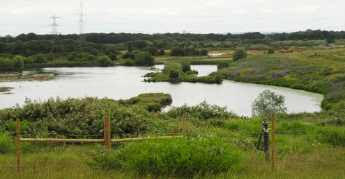 Beddington Farmlands nature reserve